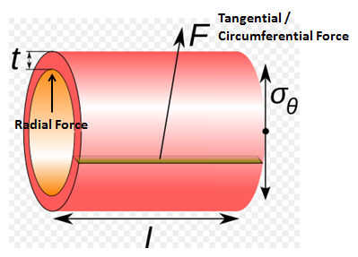 Thick Cylinder Typical Radial and Circumferential Forces
